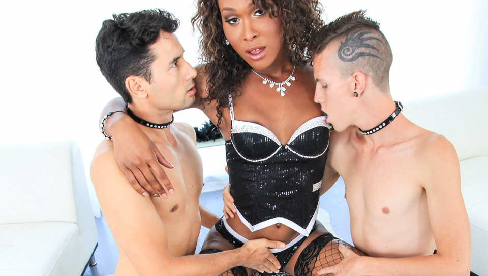 TS Playground – Gabriel D'Alessandro, Dustin Revees, Kayla Biggs