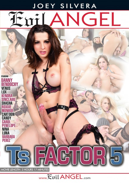 TS Factor #05 Dvd Cover