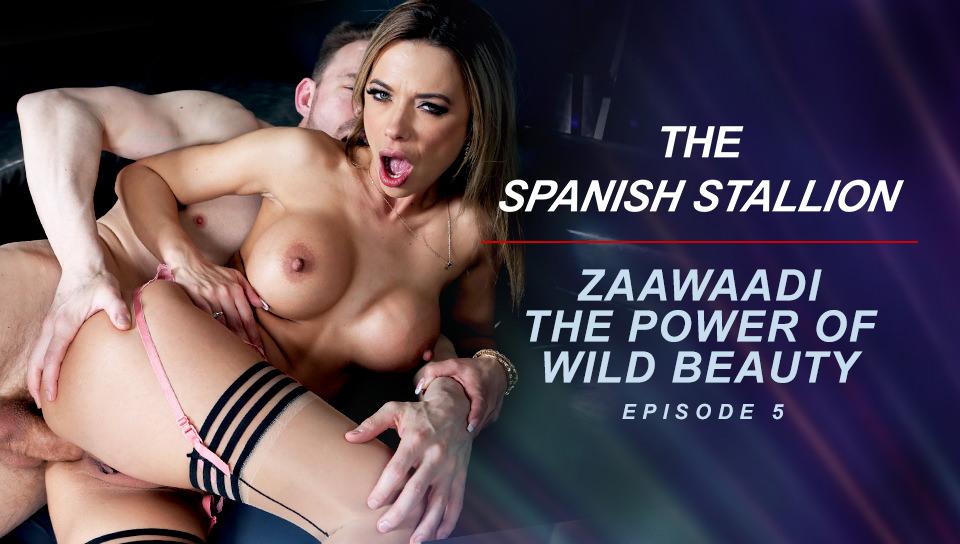 The Spanish Stallion: Zaawaadi The Power Of Wild Beauty  - Episode 5