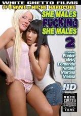 T-Girls Fucking T-Girls #02