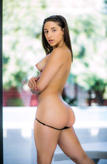 Abella Danger Picture